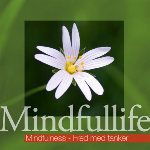 N/A – Mindfulness - fred med tanker (mindfullife) på mindly.dk
