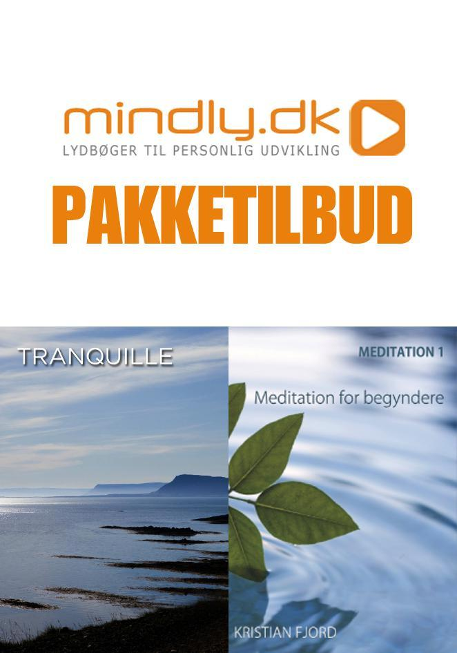 Image of   Meditation for begyndere + Meditationsmusik (Pakketilbud)