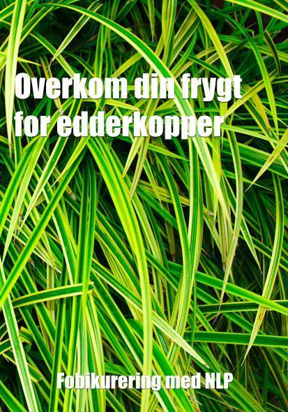 N/A Overkom din frygt for edderkopper fra mindly.dk