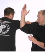 Tai Chi Selvforsvar for begyndere MP4 - Download