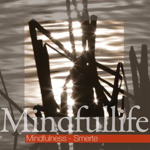 Billede af Mindfulness - Smerte (Mindfullife)