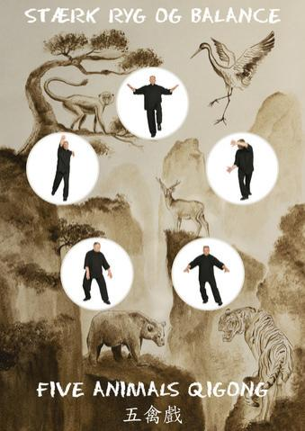 Image of Five Animals Qigong - Stærk ryg og balance Bog